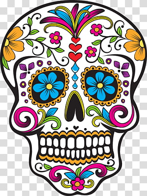 Calavera Day of the Dead Mexican cuisine Skull, skull PNG