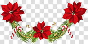 poinsettia and candy cane bunting top border, Poinsettia Christmas , Christmas Poinsettias Garland PNG clipart
