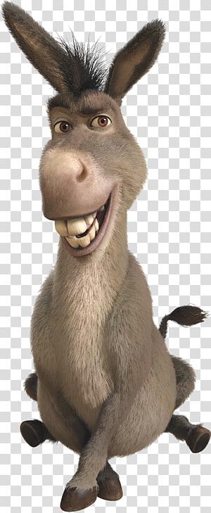 donkey , Hinny Donkey Shrek Animation, Donkey PNG