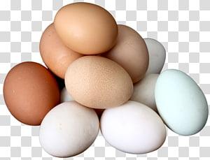 Egg salad Deviled egg Boiled egg, Egg PNG clipart
