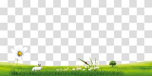 Grassland Crop Golf Balls, extension PNG clipart