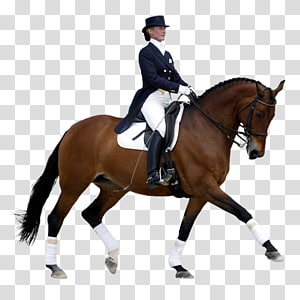 Horse Dressage International Federation for Equestrian Sports Eventing, jumping PNG