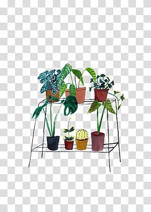 Watercolor Workshop Watercolor painting Plant Art, plant PNG