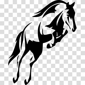 Horse Show jumping Stallion , horse PNG clipart
