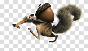 Scrat Ice Age Animated film Acorn, scrat PNG