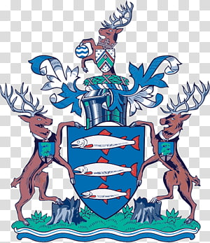 Kingston upon Thames London Borough Council London Borough of Sutton Royal Borough of Greenwich London Borough of Richmond upon Thames Surbiton, others PNG clipart