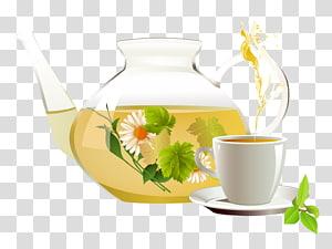 Green tea Chrysanthemum tea White tea Herbal tea, tea cup PNG
