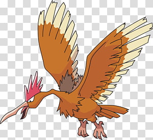 Pokémon Red and Blue Fearow Pidgeot Pokémon vrste, others PNG