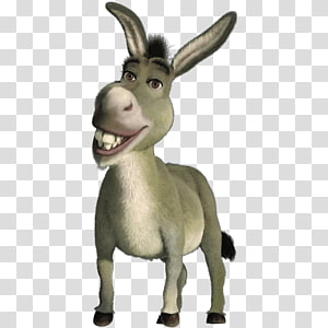 Donkey Shrek Film Series Princess Fiona Puss in Boots, donkey PNG