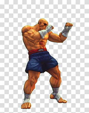 Sagat Street Fighter V Super Street Fighter IV Adon, others PNG