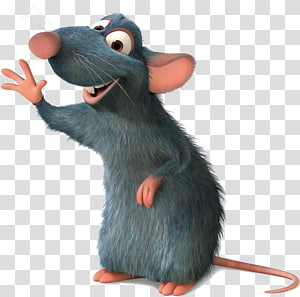 Ratatouille waving his left hand, Laboratory rat Black rat Rat race Blog, rats PNG