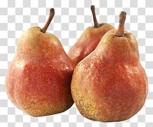 Fruit Asian pear, Pear Fruit PNG
