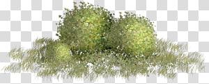 Green , Green grass material storm PNG clipart