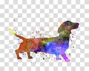 Dachshund Puppy Silhouette, Romero PNG