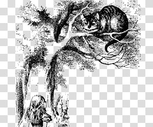 Cheshire Cat Alice\'s Adventures in Wonderland Mad Hatter March Hare Queen of Hearts, Alice cat PNG clipart