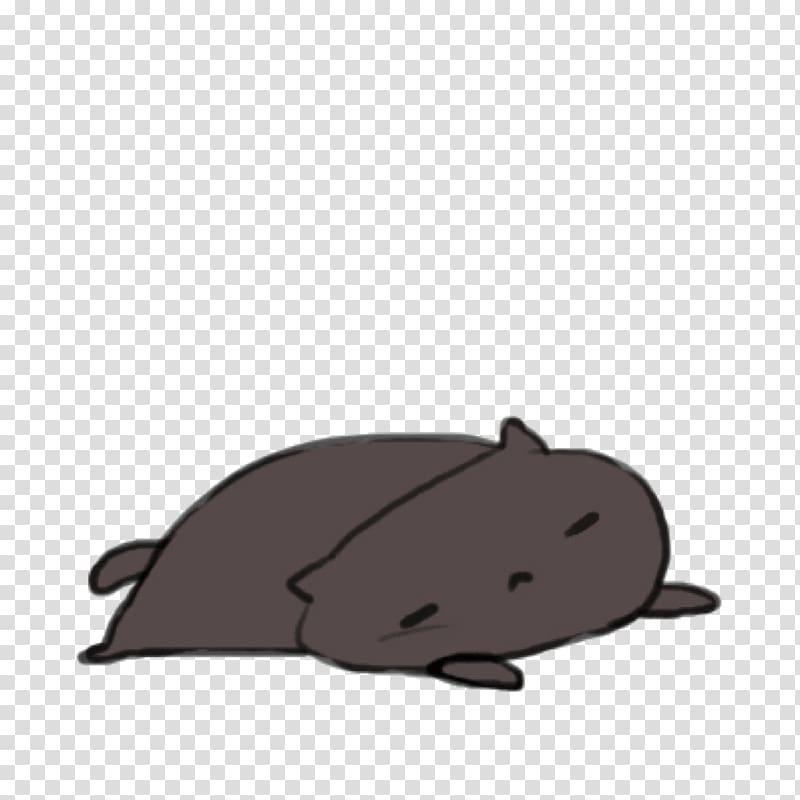 Gfycat Kitten GIF Kawaii, Cat PNG