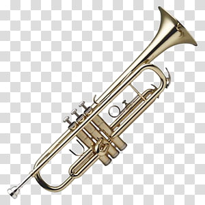 brass-colored trumpet, Trumpet , Trumpet PNG