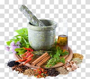 mortar and pestle illustration, Herbalism Traditional medicine Alternative Health Services, health PNG