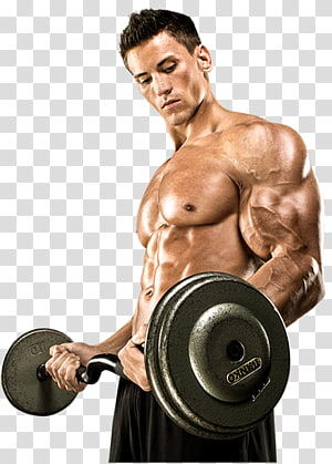Dietary supplement Muscle Bodybuilding supplement Mass, bodybuilding PNG