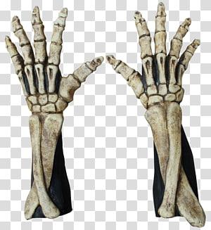 Robe Skeleton Finger Glove Hand, Skeleton PNG