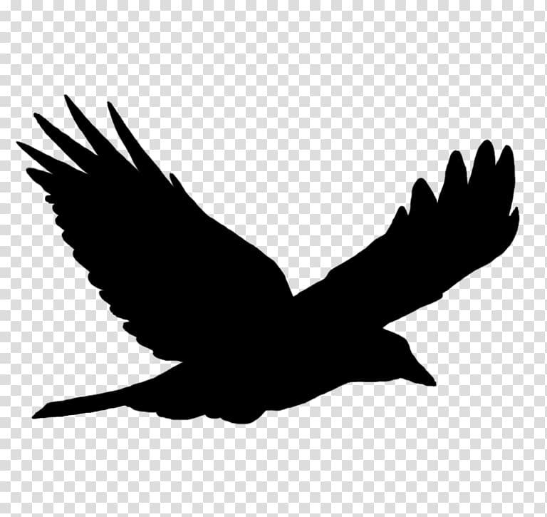 Bird flight Bird flight Silhouette , Bird PNG