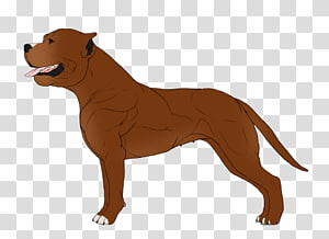 Dog breed Boston Terrier American Staffordshire Terrier Cane Corso Staffordshire Bull Terrier, Cat PNG