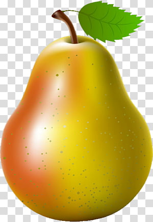 Asian pear Fruit , pear PNG clipart
