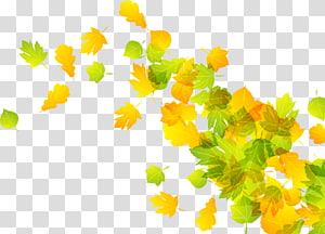 2 Leaf Autumn, Falling leaves PNG clipart