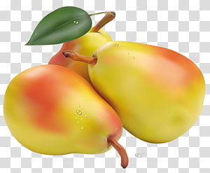 Pear Fruit , Yellow pears PNG