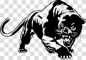 Black panther YouTube , black panther PNG