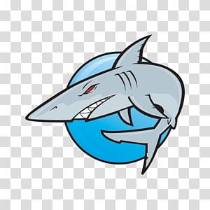 Great white shark Hammerhead shark, cartoon shark PNG clipart