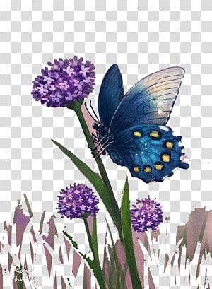 Monarch butterfly Cartoon , Cartoon butterfly PNG clipart