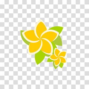 Petal Logo Pollinator Flower, frangipani PNG clipart
