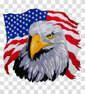 bald eagle with USA flag background , United States T-shirt Bald Eagle Hoodie, american PNG clipart