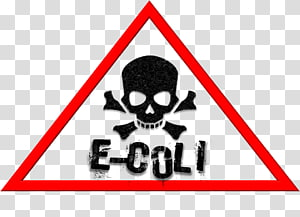 Food poisoning Infection E. coli Food safety, poisonous mushrooms PNG clipart