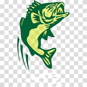 graphics Drawing Illustration, BASS Fishing PNG clipart