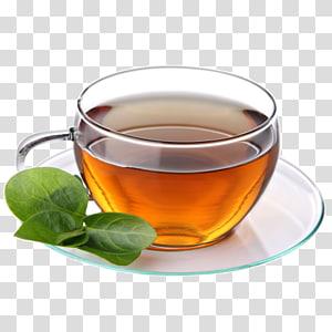 Green tea Coffee Cafe Teacup, tea PNG