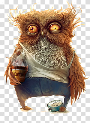 Owl Desktop Ultra-high-definition television 1080p, owl PNG