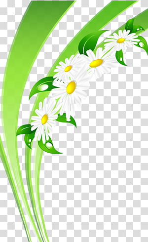 Day of Russian Family and Love , Chamomile flower PNG