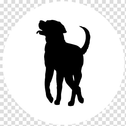 Labrador Retriever Puppy Dog Breed Golden Retriever Pembroke