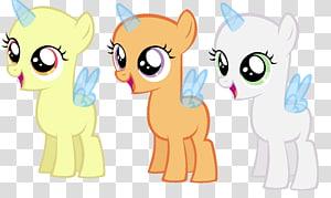 Sweetie Belle Rarity Cutie Mark Crusaders Rainbow Dash Pinkie Pie, cute unicorn PNG