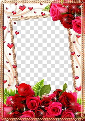 frame Flower Rose, Mood Frame s, pink and red roses digital frame PNG