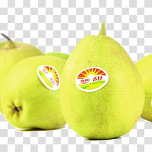 Pear Fruit, Fresh Pear PNG clipart