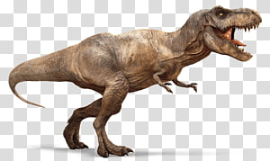 a dinosaur PNG clipart