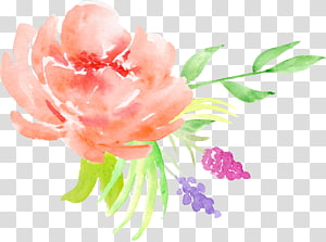 orange roses decorative pattern PNG clipart