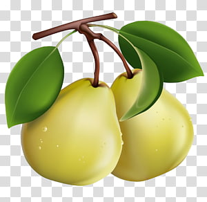 Pear Berry Fruit , pear PNG clipart