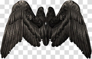 Wing , Devil Wings PNG clipart