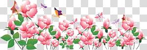 Web banner Advertising Flower, flowers banner PNG clipart