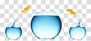 two orange goldfishes , Mergers and acquisitions Microsoft PowerPoint Presentation slide Diagram, Jumping fish tank PNG clipart