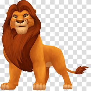 Lion Simba Mufasa Sarabi Pumbaa, lion PNG